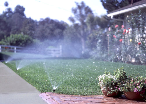 Sprinkler-Systems-Dallas